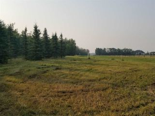 Photo 8: #43-25527- Twp Road 511A Road: Rural Parkland County Rural Land/Vacant Lot for sale : MLS®# E4226843