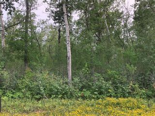 Photo 1: 10 Northwinds Road in Alonsa: Lake Manitoba Narrows Residential for sale (R19)  : MLS®# 202119780