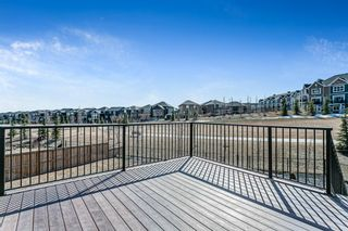 Photo 41: 179 Nolancrest Heights NW in Calgary: Nolan Hill Detached for sale : MLS®# A1083011
