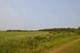 Photo 4: Range Rd 180 & Township Rd 562: Rural Lamont County Rural Land/Vacant Lot for sale : MLS®# E4258174