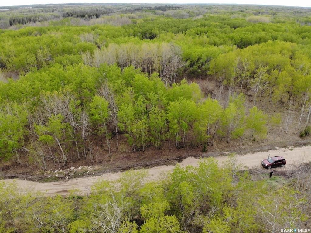 Main Photo: E Second Street South in Endeavour: Lot/Land for sale : MLS®# SK856274