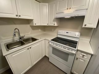 Photo 1: 7xx1 Williams Rd in Richmond: Broadmoor Multifamily for rent