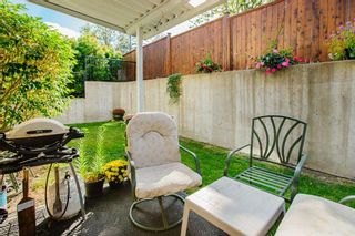 "Photo 18: 49 22308 124 Avenue in Maple Ridge: West Central Townhouse for sale in ""BRANDY WYND ESTATES"" : MLS®# R2494203"