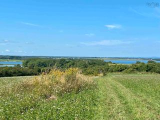 Photo 13: 11.6 acres East Tracadie Road in East Tracadie: 301-Antigonish Vacant Land for sale (Highland Region)  : MLS®# 202122282