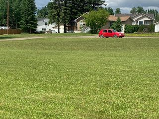Photo 2: 110 First Street W: Cremona Residential Land for sale : MLS®# A1108250