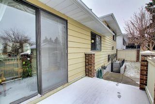 Photo 44: 140 Thames Close NW in Calgary: Thorncliffe Detached for sale : MLS®# A1097862