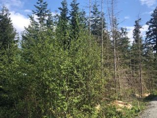 Photo 5: Lt 4 Ross Ave in ROYSTON: CV Courtenay South Land for sale (Comox Valley)  : MLS®# 838173