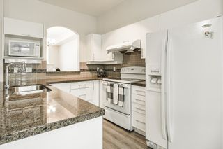 Photo 5: 20 6950 120 STREET in Surrey: West Newton Townhouse for sale : MLS®# R2367088