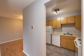 Photo 10: 410 1624 48 Street in Edmonton: Zone 29 Condo for sale : MLS®# E4259971