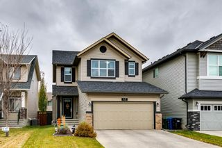 Main Photo: 43 Chaparral Valley Way SE in Calgary: Chaparral Detached for sale : MLS®# A1155579