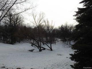 Photo 18: 16 Litz Place in WINNIPEG: East Kildonan Residential for sale (North East Winnipeg)  : MLS®# 1501673