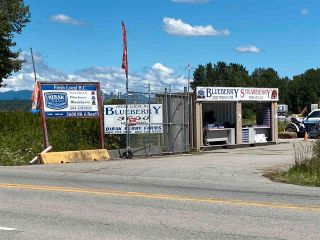 Photo 1: 3600 NO. 6 Road in Richmond: East Richmond Agri-Business for sale : MLS®# C8038837