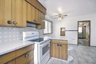 Photo 8: 12021 79 Street in Edmonton: Zone 05 House for sale : MLS®# E4251373