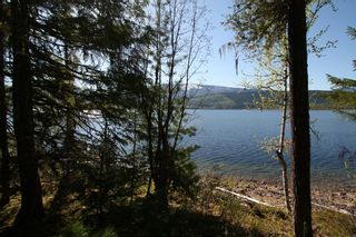 Photo 8: Lot 2 Bradley Road: Seymour Arm Land Only for sale (Shuswap)