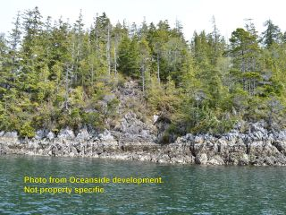 Photo 6: SL 50 Hot Springs Oceanside in TOFINO: PA Tofino Land for sale (Port Alberni)  : MLS®# 831209