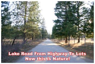 Photo 9: 181 12 Little Shuswap Lake Road in Chase: Little Shuswap River Vacant Land for sale : MLS®# 137093