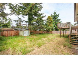 Photo 20: 5291 WILLIAMS Avenue in Tsawwassen: Pebble Hill House for sale : MLS®# V1126867