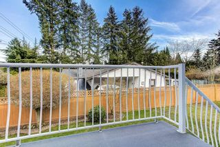 Photo 16: 11998 210TH Street in Maple Ridge: Southwest Maple Ridge House for sale : MLS®# R2553047
