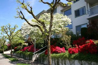 "Photo 3: 308 7554 BRISKHAM Street in Mission: Mission BC Condo for sale in ""Briskham Manor"" : MLS®# R2268194"