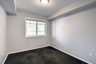 Photo 35: 104 8909 100 Street in Edmonton: Zone 15 Condo for sale : MLS®# E4262789