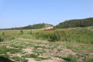 Photo 42: 23509 Twp 484: Rural Leduc County House for sale : MLS®# E4258040