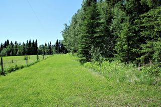 Photo 5: 6124 Township Road 314: Rural Mountain View County Detached for sale : MLS®# A1102303