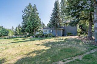Photo 20: 12807 54 Avenue in Surrey: Panorama Ridge House for sale : MLS®# R2426492