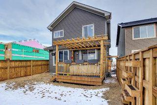 Photo 45: 28 Sundown Avenue: Cochrane Detached for sale : MLS®# A1071788