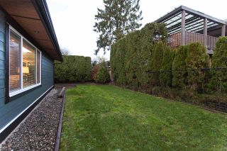 Photo 19: 5110 214 Street in Langley: Murrayville House for sale : MLS®# R2126801