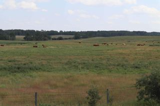Photo 3: Twp 510 RR 33: Rural Leduc County Rural Land/Vacant Lot for sale : MLS®# E4256128
