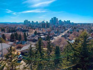 Photo 4: 227 13 Street NE in Calgary: Renfrew Semi Detached for sale : MLS®# A1089566
