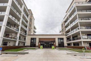 Photo 45: 642 200 Bellerose Drive: St. Albert Condo for sale : MLS®# E4244587