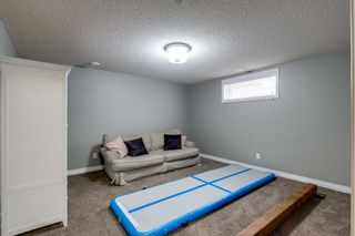 Photo 30: 16 CODETTE Way: Sherwood Park House for sale : MLS®# E4237097