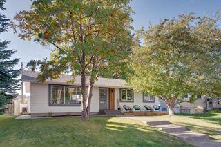 Photo 54: 10815 Maplecreek Drive SE in Calgary: Maple Ridge Detached for sale : MLS®# A1038611