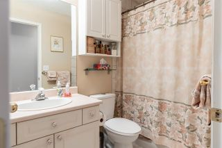 Photo 28: 41 Deer Park Way: Spruce Grove House for sale : MLS®# E4229327