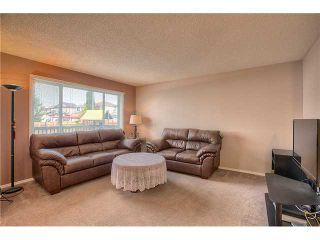Photo 6: 260 HARVEST CREEK Court NE in CALGARY: Harvest Hills Residential Detached Single Family for sale (Calgary)  : MLS®# C3633945