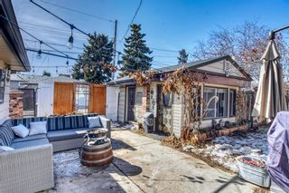 Photo 8: 2115 Mackid Crescent NE in Calgary: Mayland Heights Detached for sale : MLS®# A1080509