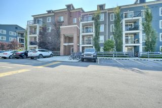 Main Photo: 4118 99 Copperstone Park SE in Calgary: Copperfield Apartment for sale : MLS®# A1132487