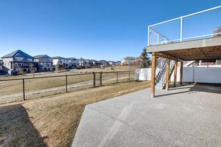 Photo 47: 231 LAKEPOINTE Drive: Chestermere Detached for sale : MLS®# A1080969