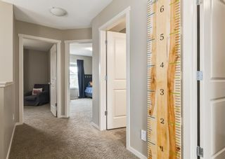 Photo 30: 481 Evanston Drive NW in Calgary: Evanston Detached for sale : MLS®# A1126574