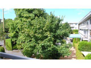 Photo 6: # 401 711 E 6TH AV in Vancouver: Mount Pleasant VE Condo for sale (Vancouver East)  : MLS®# V1135370