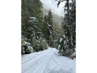 Photo 28: 1969 SANDY ROAD in Castlegar: Vacant Land for sale : MLS®# 2461033