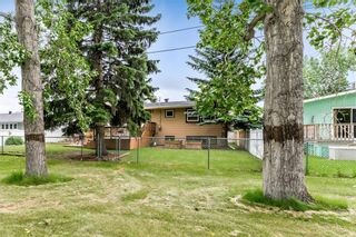 Photo 32: 184 MAPLE COURT Crescent SE in Calgary: Maple Ridge Detached for sale : MLS®# A1080744