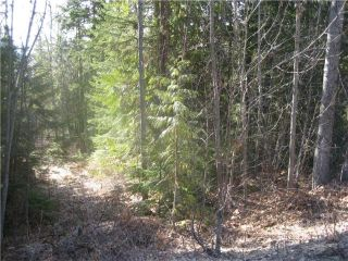 Photo 1: 84 Anglemont Way in Anglemont: North Shuswap Land Only for sale (Shuswap)  : MLS®# 10058557