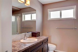 Photo 18: 123 COPPERSTONE Gardens SE in Calgary: Copperfield House for sale : MLS®# C4168083