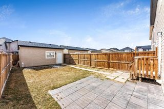 Photo 25: 20 SKYVIEW POINT Heath NE in Calgary: Skyview Ranch Semi Detached for sale : MLS®# A1088927