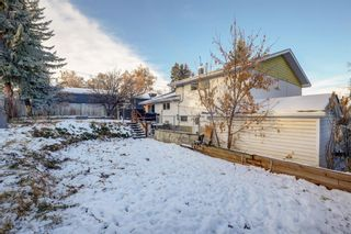 Photo 21: 11 Celtic Road NW in Calgary: Cambrian Heights Detached for sale : MLS®# A1050737