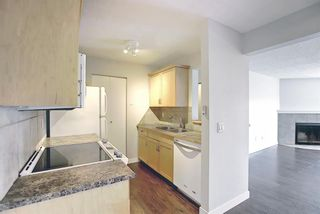 Photo 11: 4302 13045 6 Street SW in Calgary: Canyon Meadows Apartment for sale : MLS®# A1116316