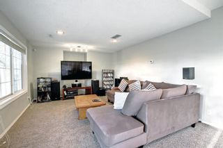 Photo 39: 129 Coral Shores Bay NE in Calgary: Coral Springs Detached for sale : MLS®# A1151471