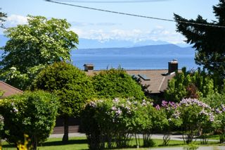 Photo 7: 2267 Seabank Rd in : CV Courtenay North Land for sale (Comox Valley)  : MLS®# 876071